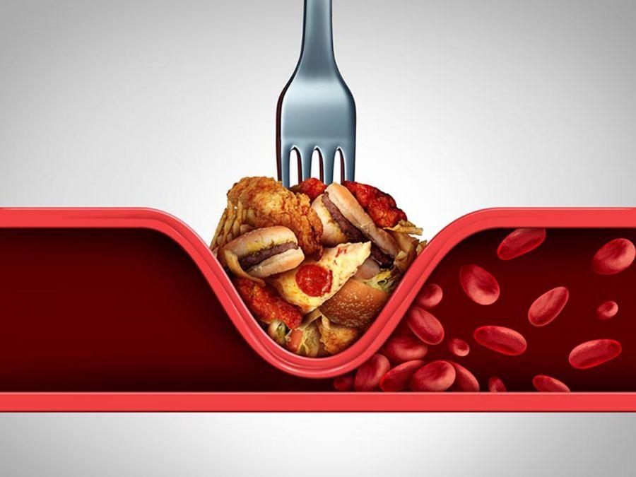 Продукты влияют на уровень холестерина