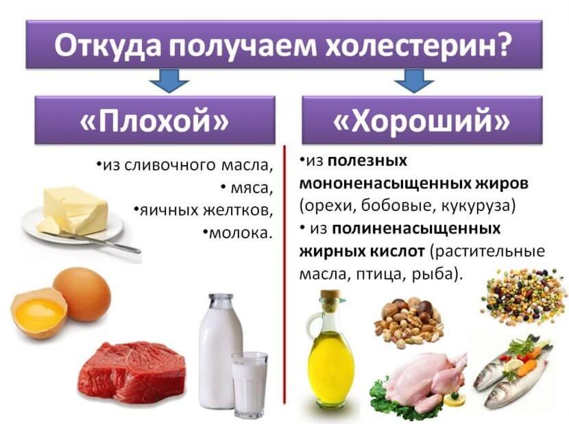 Откуда получаем холестерин